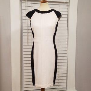 Worthington Sheath Dress, Size 8
